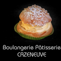 Logo Cazeneuve